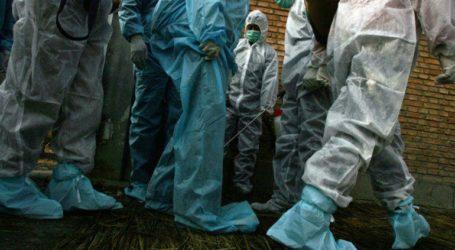 Οι Αρχές ερευνούν τα αίτια που προκάλεσαν επιδημία πνευμονίας στην πόλη Γουχάν