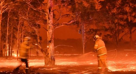 Κινητοποίηση για τη διάσωση χιλιάδων ανθρώπων που έχουν αποκλεισθεί από τις πυρκαγιές