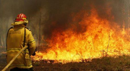 Mαίνονται οι καταστροφικές πυρκαγιές στην Αυστραλία