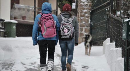 Κλειστά σχολεία λόγω χιονόπτωσης στη Θήβα