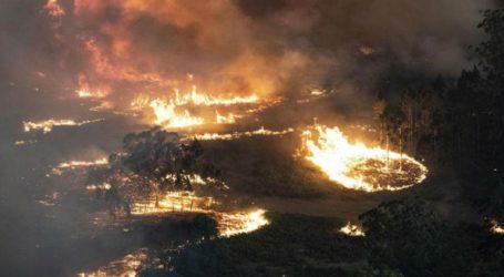 Νέο κύμα καύσωνα στην Αυστραλία