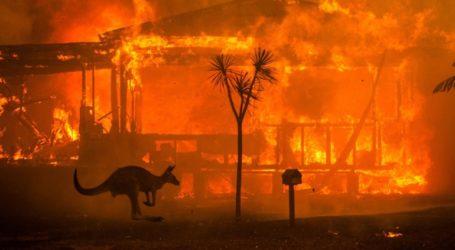 Υπό έλεγχο τέθηκε η μεγαλύτερη πυρκαγιά στην Αυστραλία