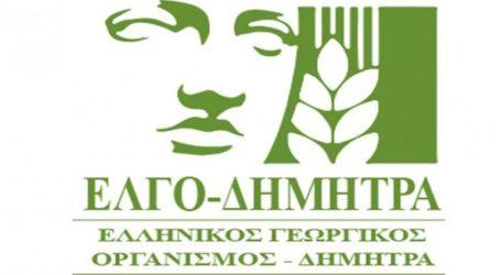 Αγώνας δρόμου για τα προγράμματα κατάρτισης 14.667 νέων αγροτών