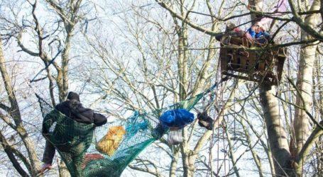 Διαδηλωτές στη Βρετανία σκαρφάλωσαν σε δέντρα για να προστατεύσουν δάσος απ' όπου θα περάσει σιδηροδρομική γραμμή