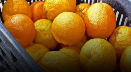 Επέβαλλαν πρόστιμο 1.500 ευρώ σε πλανόδιο πωλητή… πορτοκαλιών