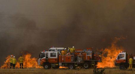 Η Καμπέρα τέθηκε σε κατάσταση έκτακτης ανάγκης για πρώτη φορά μετά το 2003 εξαιτίας των πυρκαγιών