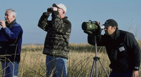 Μαγνησία: Σπάνια πουλιά φέρνουν… τουρισμό και ανάπτυξη στη λίμνη Κάρλα