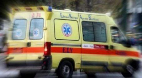 Συγκλονίζει ο σύζυγος της 69χρονης που δαγκώθηκε από το σκυλί της στα Καλά Νερά [βίντεο]