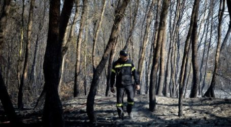 73χρονος με χειροπέδες για την μεγάλη χθεσινή φωτιά στη Μελιβοία Αγιάς