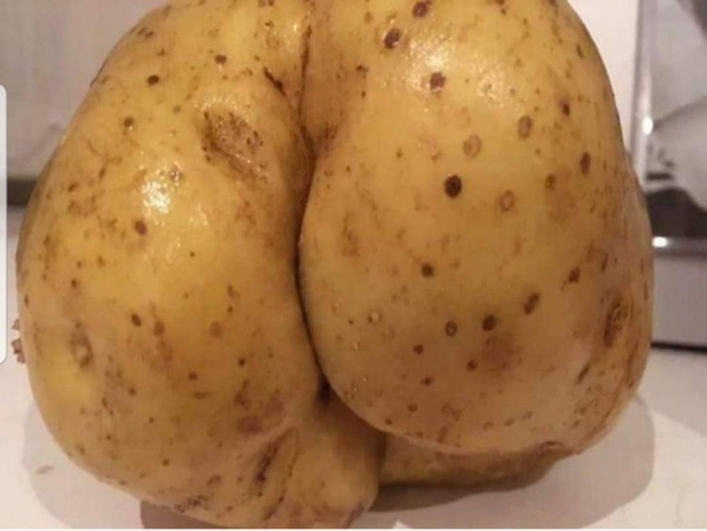 patata mesoxwri