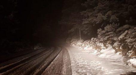 ΤΩΡΑ: Χιονόπτωση στο Πήλιο – Που επιχειρούν τα μηχανήματα