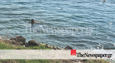 Βόλος: Μπάνιο στη θάλασσα με 3 βαθμούς Κελσίου – Οι ιστορίες των χειμερινών κολυμβητών [εικόνες]