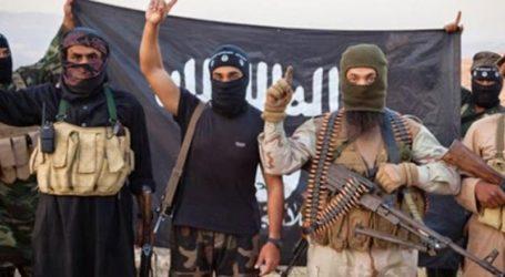 """Οι """"φυλές"""" των τζιχαντιστών και το Εμιράτο της Αλ Νούσρα"""