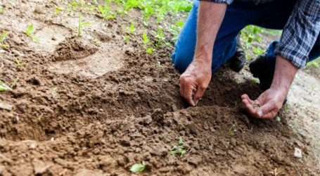Οι Αγρότες διαδηλώνουν για τις «τιμές της ελεημοσύνης» στα προϊόντα τους