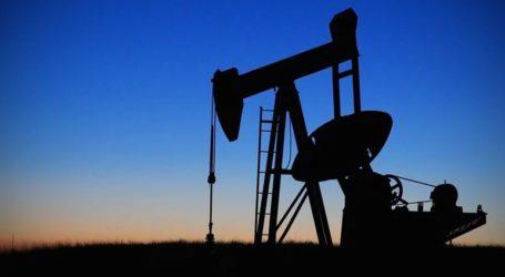 Ο στρατός απέτρεψε επίθεση ανταρτών σε πετρελαιαγωγό