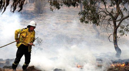 Υπό έλεγχο έχουν τεθεί όλες οι πυρκαγιές στην Νέα Νότια Ουαλία