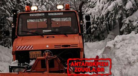 Η ελληνική κυβέρνηση δεν ζήτησε βοήθεια για τις καταστροφές του «Ηφαιστίωνα»