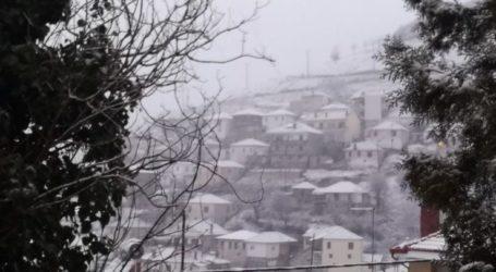 Στα λευκά ξανά οι ορεινές περιοχές της Ελασσόνας – Δείτε φωτογραφίες και βίντεο από το χιονισμένο Λιβάδι