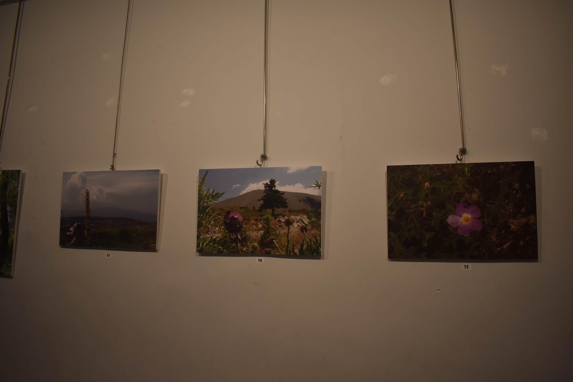 Έκθεση φωτογραφίας και παρουσίαση βιβλίου από την «ΔΡΥΑΣ» για το περιβάλλον (φωτο)