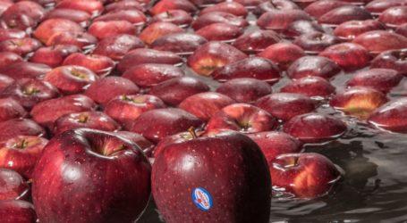 ΖΑΓΟΡΙΝ: Γεωργική παραγωγή και στοχευμένες δράσεις περιβαλλοντικής προστασίας