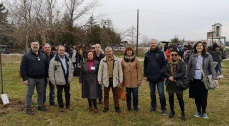 Δεντροφύτευση του 6ου Γυμνασίου Λάρισας στο πλαίσιο προγράμματος Erasmus+