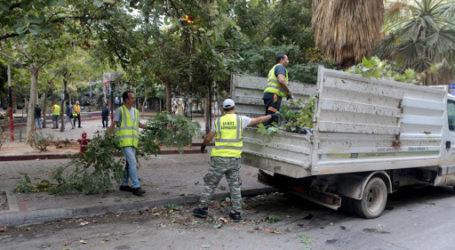 Δήμος Βόλου: 20 προσλήψεις στην Υπηρεσία Πρασίνου