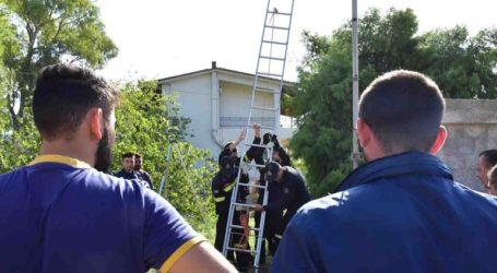 Νεκρός άνδρας ανασύρθηκε από πηγάδι στην Ερμιόνη