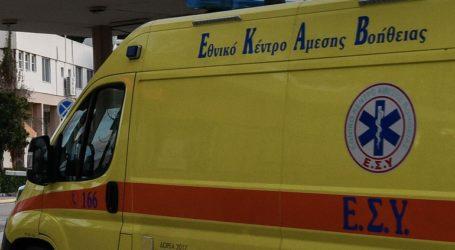 Θεσσαλονίκη: Επίθεση από αδέσποτα σκυλιά δέχθηκαν δύο άνδρες- Σε σοβαρή κατάσταση ο ένας