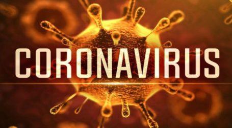 Νέα έρευνα δείχνει πως ο κορωνοϊός δεν φτιάχτηκε σε εργαστήριο