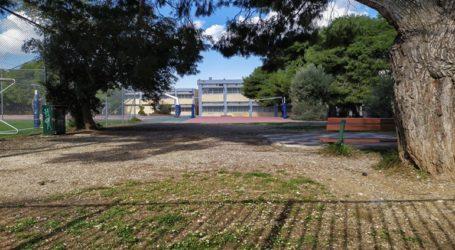 Την κατασκευή δημοτικού και νηπιαγωγείου στην Καλλιτεχνούπολη Δήμου Ραφήνας-Πικερμίου ενέκρινε το ΣτΕ