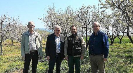 Ο ΕΛΓΑ στη ΔΕ Αρμενίου – Κιλελέρ για πρώτες εκτιμήσεις ζημιών σε οπωροφόρα και αγροτικές καλλιέργειες από τον παγετό
