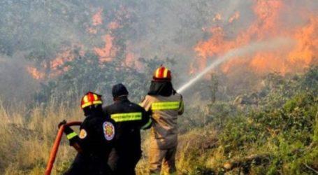 Όθρυς: Φωτιά στο Τσατάλι κινητοποίησε την Πυροσβεστική υπηρεσία Βόλου