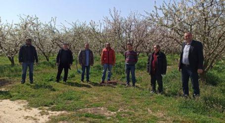 Επίσκεψη του δημάρχου Τυρνάβου στις πληγείσες περιοχές από τον χθεσινό παγετό