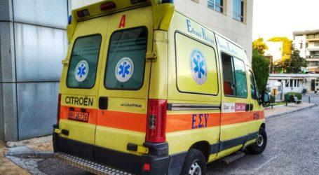 Επίθεση από αδέσποτο σκύλο δέχτηκε 20χρονος στον Δήμο Νεάπολης-Συκεών