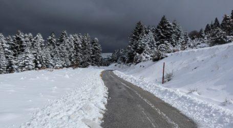 Χιονόπτωση σε Ευρυτανία και Δυτική Φθιώτιδα