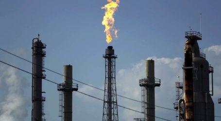 Ο ΟΠΕΚ δεν έχει ζητήσει από τον Τραμπ τη μείωση της αμερικανικής παραγωγής πετρελαίου