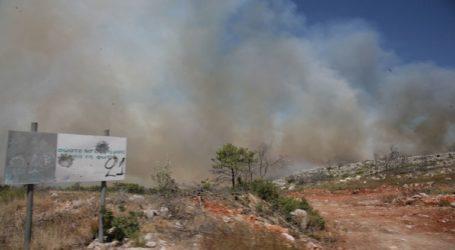 Χίος: Πυρκαγιά σε δασική έκταση