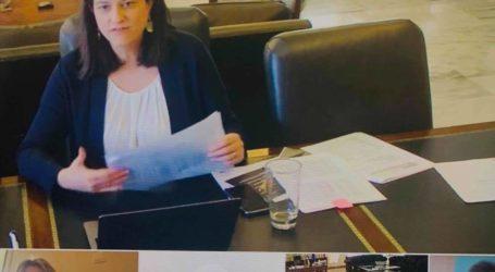 Ζέττα: Τηλεδιάσκεψη με Κεραμέως