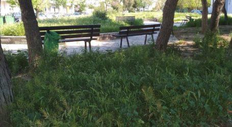 Σοβαρό πρόβλημα με το Πράσινο στον Δήμο Βόλου