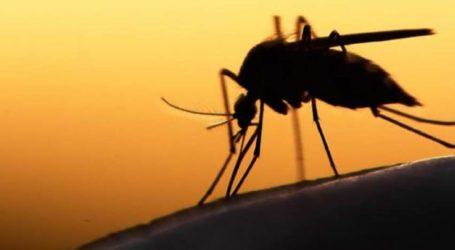 Λαϊκή Συσπείρωση Θεσσαλίας: Κατεπείγουσα ανάγκη η Περιφέρεια Θεσσαλίας να κάνει ψεκασμούς για τα κουνούπια στις πληγείσες περιοχές