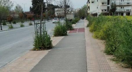 Θεριεύουν τα χόρτα στα πεζοδρόμια της Σαρίμβεη – Να καθαριστεί η περιοχή ζητούν πολίτες από τον δήμο Λαρισαίων (φωτο)