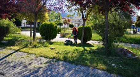 Συνεχίζεται η επιχείρηση καθαρισμού σε πάρκα και πλατείας του Βόλου – Δείτε εικόνες