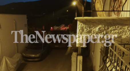 Βόλος: Φίδι αναστάτωσε κατοίκους και Πυροσβεστική στις Νέες Παγασές