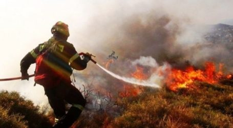 Συναγερμός για ανεξέλεγκτη φωτιά στη Φθιώτιδα