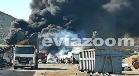 Μεγάλη φωτιά σε επιχείρηση ανακύκλωσης