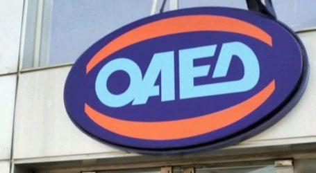 Με μεγάλη συμμετοχή υλοποιείται η τηλεκπαίδευση στις σχολές του ΟΑΕΔ