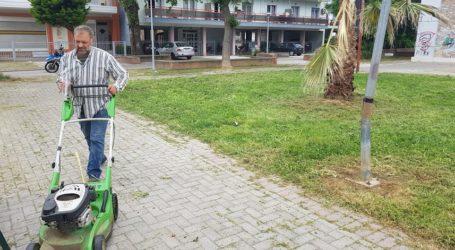 Βόλος: Επιχείρηση της υπηρεσίας Πρασίνου στο πάρκο ΔΙΕΚ [εικόνες]