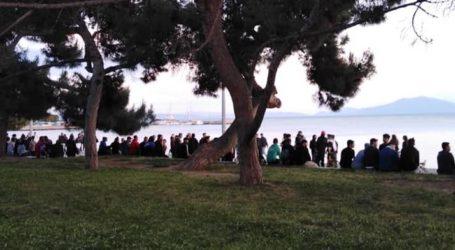Βόλος: Κοσμοσυρροή στο πάρκο του Αγίου Κωνσταντίνου – Τι λένε οι ειδικοί