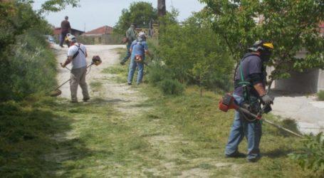 Σε κοινές δράσεις εξωραϊσμού της Τσαριτσάνης και ο Εξωραϊστικός Σύλλογος