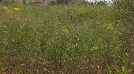 Τύρναβος: Καθαρισμός οικοπέδων που βρίσκονται εντός οικισμών από τα ξηρά χόρτα και άλλα εύφλεκτα υλικά